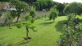 Overzicht van de moestuin c.q. vruchtenboomgaard