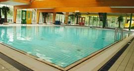 Op het park is een ruim zwembad aanwezig.