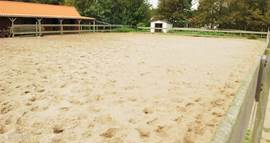 Op het recreatiepark is een mini manege aanwezig. Ideaal voor paardenliefhebbers.