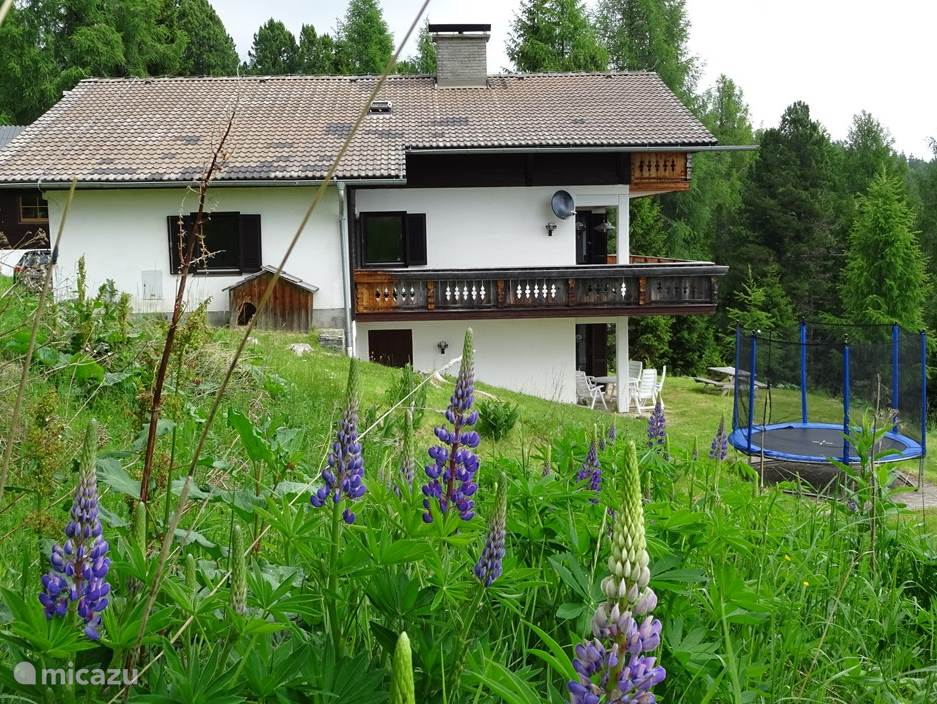 Vacation rental Austria, Carinthia, Hochrindl apartment Villa Alpenblick -1