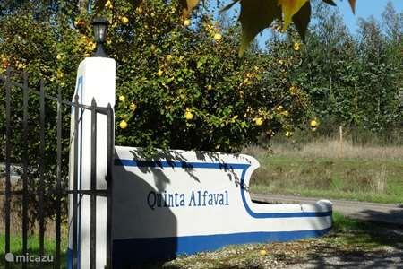 Vakantiehuis Portugal, Alentejo – vakantiehuis Casa Madeira