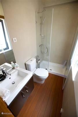 De badkamer die bij een slaapkamer hoort. Voorzien van wastafel, toilet en douche.