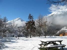 De tuin in de winter. Sneeuwpoppen maken of gewoon genieten in het zonnetje.