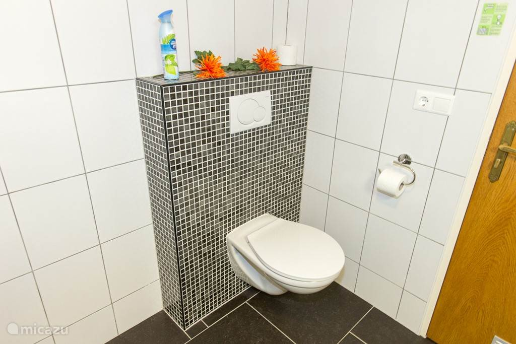 Toilet, lichtelijk verhoogd.