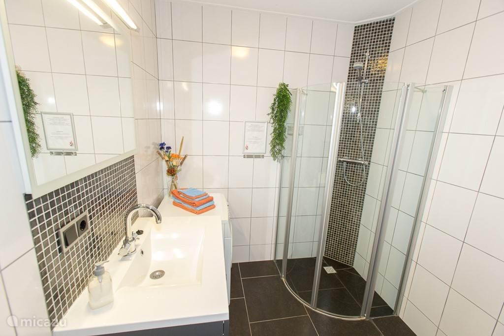 Badkamer met bad meubel, douchehoek, wasmachine en toilet.