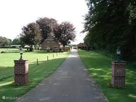 De woning gezien vanaf de provinciale weg, rechts ziet u de bos waar u met 10 stappen vanuit de voordeur bent.