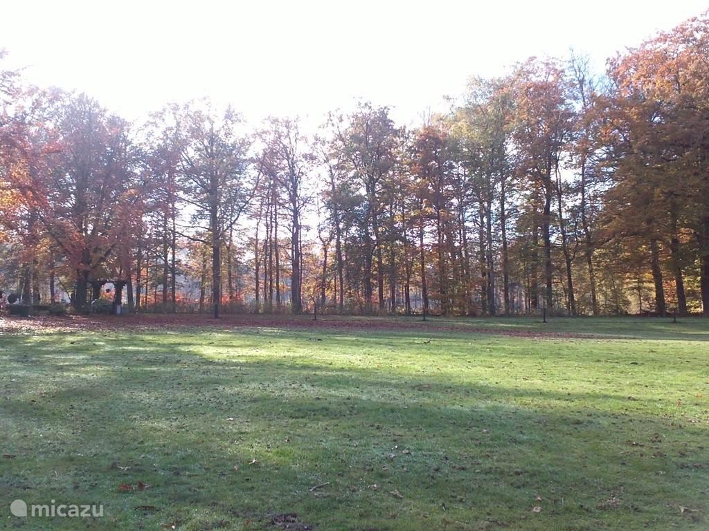 De herfst is aangebroken