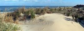 Mooie stranden en duinen.