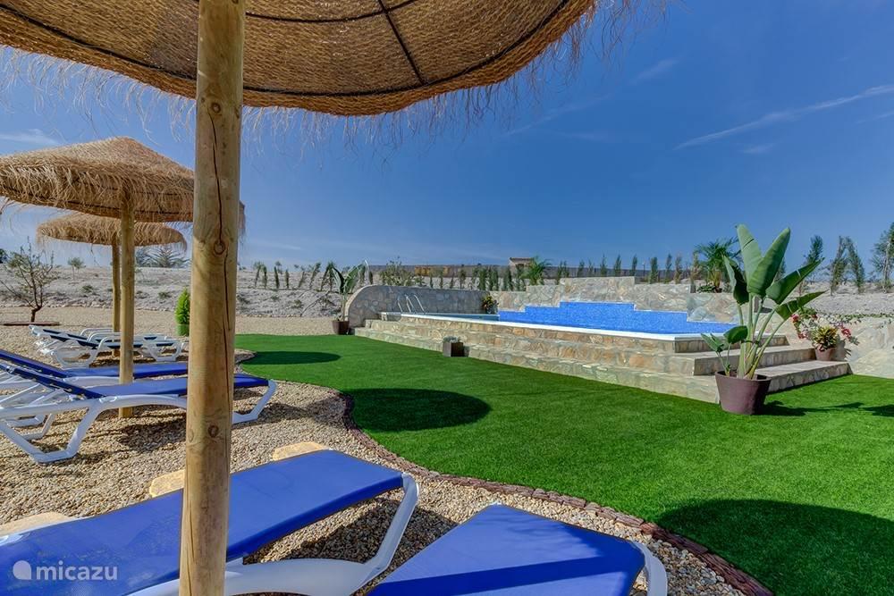 Zwembad (8 x 4 meter) met ligbedden