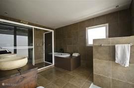 Badkamer met dubbele douche, ligbad en toilet