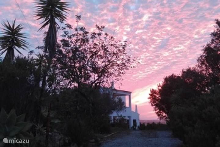 Vacation rental Portugal, Algarve, Moncarapacho Holiday house Casa da Palma Alojamento Local 89045