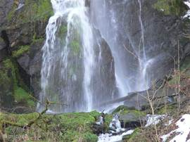 The waterfall Plästerlegge is the largest of the Sauerland and a wonderful walk through to reach.'s Elpetal