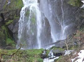 De waterval Plästerlegge is de grootste van Sauerland en met een prachtige wandeling door het Elpetal te bereiken.