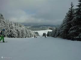 In de winter kun je op wintersport, met name het grote gebied van Winterberg (26 liften) is zeer populair en slechts 9km van het appartement
