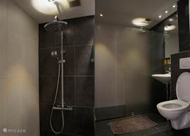 Luxury bathroom with walk-in rain shower.