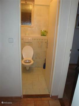 The spacious, separate toilet downstairs.