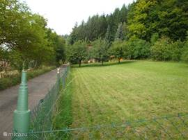 Overview of the garden. Fully fenced and safe for children. Even dogs can not walk around freely.