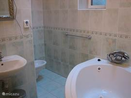 This is part of our downstairs bathroom. Including a bidet, bath and shower, as well as the upstairs bathroom.