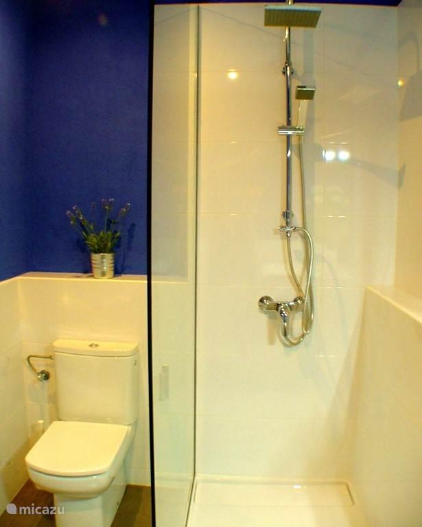 Toilet en douche in de badkamer