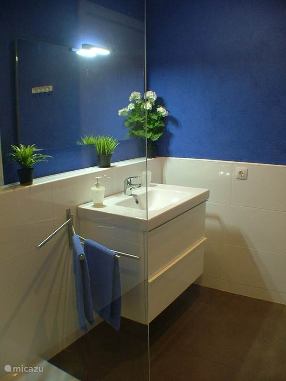 De wastafel in de badkamer