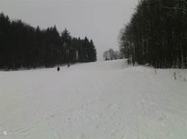 Skipiste op de Eisenberg (650 meter hoog) 20 minuten rijden vanaf de woning.