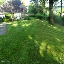 Terras met gras, vanaf de boom loopt de tuin redelijk hellend af.