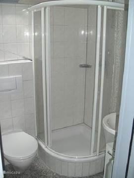 Douchcabine, wastafel en een toilet in een compacte badkamer