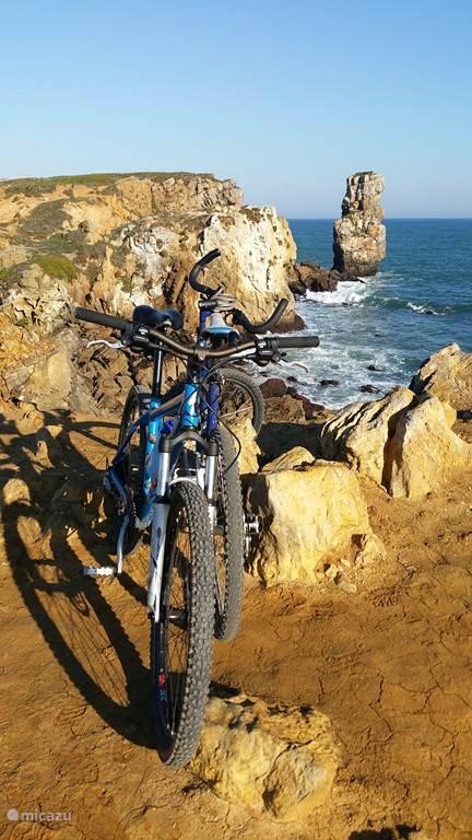 6 fietsen! w.o. Koga m. Giant en Specialized.