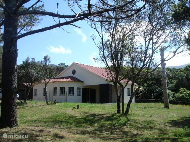 Vakantiehuis Portugal, Azoren, Capelo - Horta Vakantiehuis Forest House