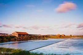 rivier do Mondego met zijn houten rivierboerderijtjes en de zoutvelden,
