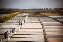 de zoutvelden bij rivier do Mondego,