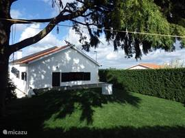 achterkant van Casa do Mondego met een ruime tuin, volop privacy, waar u heerlijk kunt genieten van de rust, de zon, of in de schaduw onder de grote boom, tuinset en bbq zijn aanwezig,