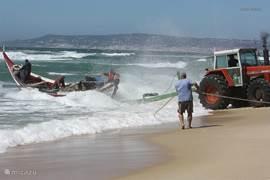 Een visser die zijn boot binnen haalt aan het einde van de middag op het strand in Praia Covo da Gala,