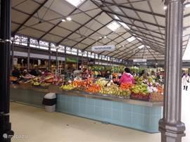 de markthal in Figueira da Foz, dagelijks verse vis, fruit, vlees, bloemen brood enz. iedere morgen geopend (behalve zondags)