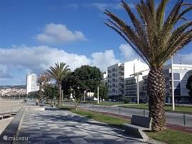 Figueira da Foz met een mooi boulevard, winkelstraten, restaurants, charmante pleintjes, Maar o.a. ook een groot casino en theater, in de zomer is er vaak live muziek en zijn er gezellige markten, winkels zijn vaak tot laat open.