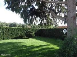 de tuin, ook aan de achterkant volledige privacy, via de zijkant (kant van de inrit) kunt u achter de coniferen komen, waar een droogmolen staat om uw was op te hangen.