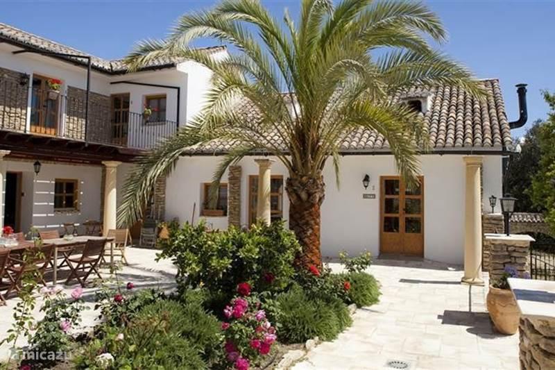 Vakantiehuis Spanje, Andalusië, Ronda Finca Villa Haza Angosta