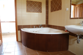 In the spacious bathroom home 'Kronos' you will find the hot tub with hand shower.