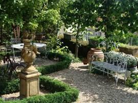 De beschutte tuin met appelboom, buxussen en leilindes
