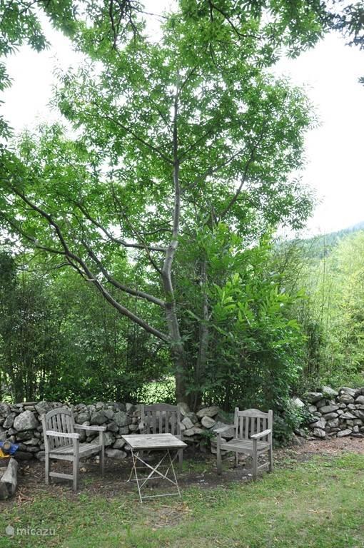 zitje in de boomgaard