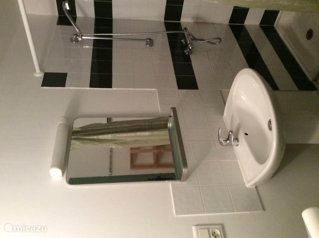badkamer met douche/wastafel