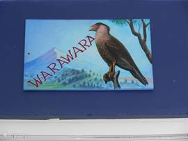 De warawara de bekende roofvogel van Curacao