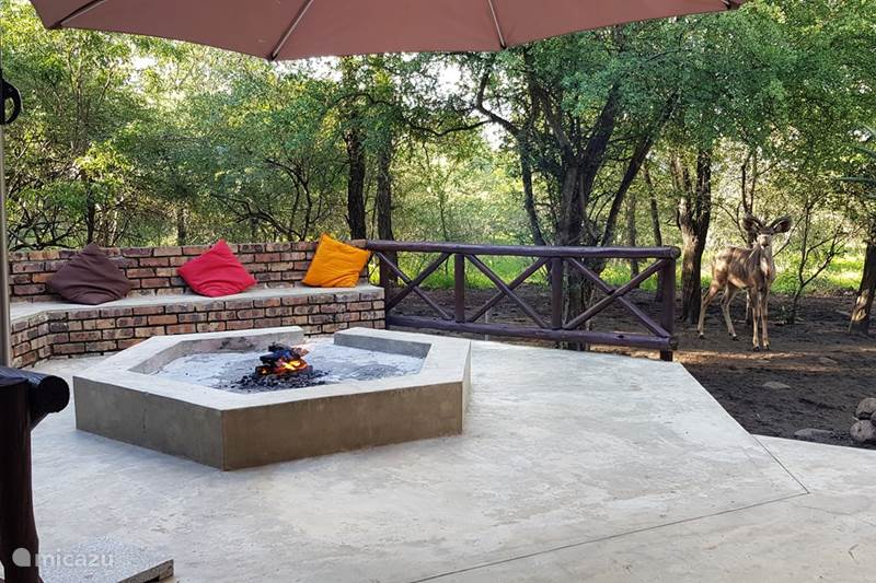 Vakantiehuis Zuid-Afrika, Mpumalanga, Marloth Park Vakantiehuis The Wild Bunch