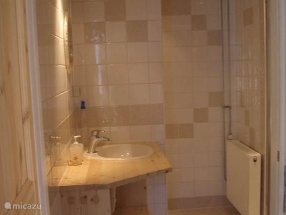Luxe, ruime badkamer met douchecabine, wastafel en toilet