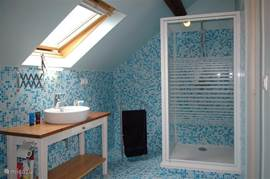 The blue bathroom on the first floor. This consists of a shower, sink and toilet.