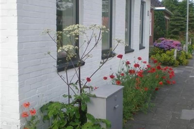 Vakantiehuis Nederland, Groningen, Molenrij Vakantiehuis Marne-Huis