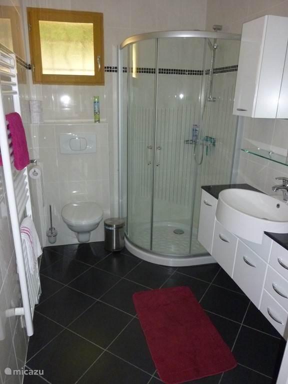 Badkamer met douche, toilet en wastafel. In de inbouwkast op de badkamer bevindt zich de wasmachine annex droger