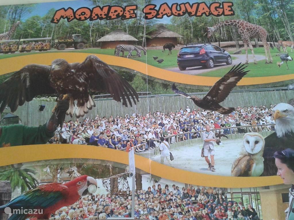 Het Safari Park in Remouchamps
