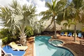 Het zwembad is direct naast het terras gelegen en is ruim opgezet. Door de uitgebreide beplanting rondom het zwembad kunt u gedurende de dag altijd wel een plekje in de zon of juist in de schaduw vinden. Heerlijke comfortabele ligstoelen staan rondom het zwembad voor u klaar.