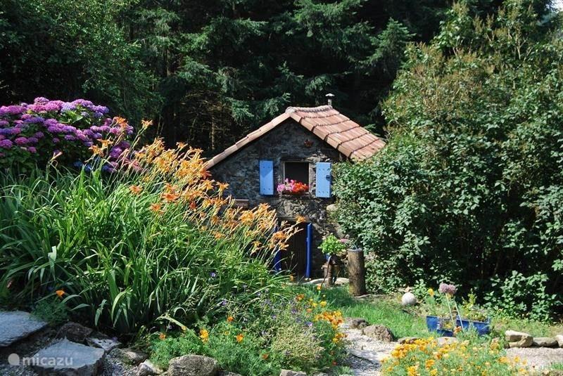 Vakantiehuis Frankrijk, Languedoc-Roussillon, Avène gîte / cottage Gîte Bergous